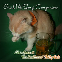 Irish Pub Songs Companion
